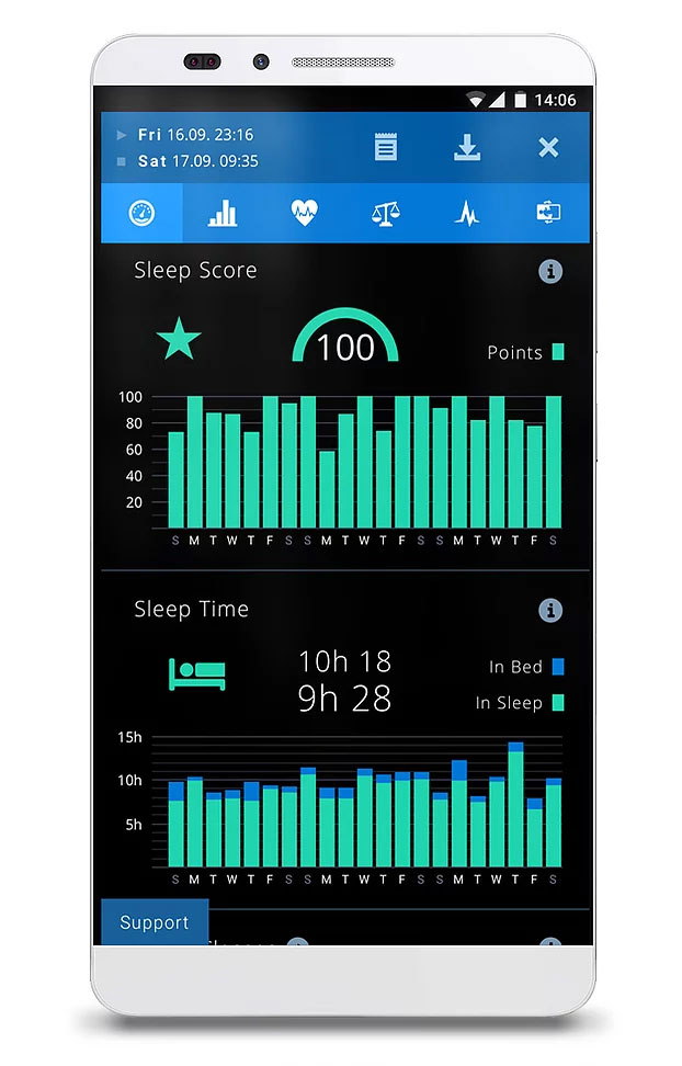 What does the Sleep Score mean